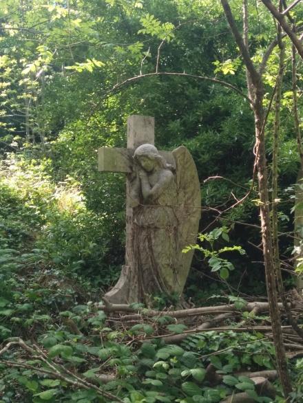 Mezarlıktan huzur verici bir görüntü... (Fotoğraf: Duygu Olcabay Özgür)
